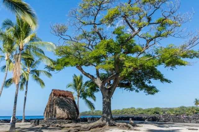 Deine Glücksreise nach Hawai'i 2018
